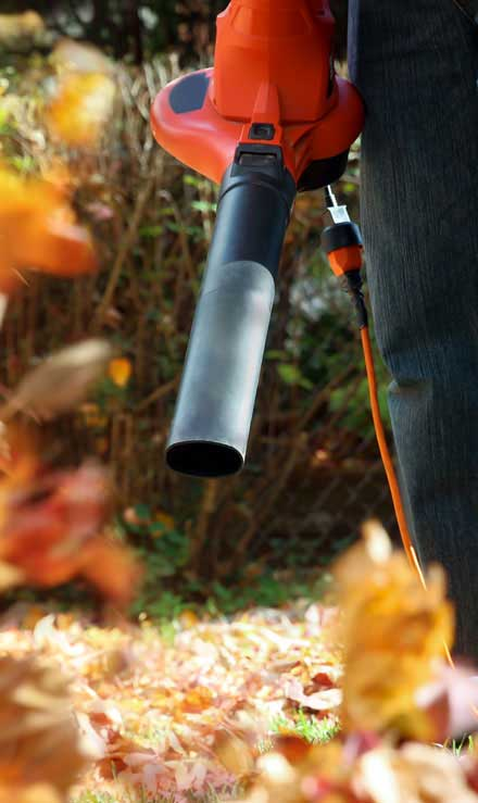 Chatwells' Landscapes Residential Leaf Removal Services